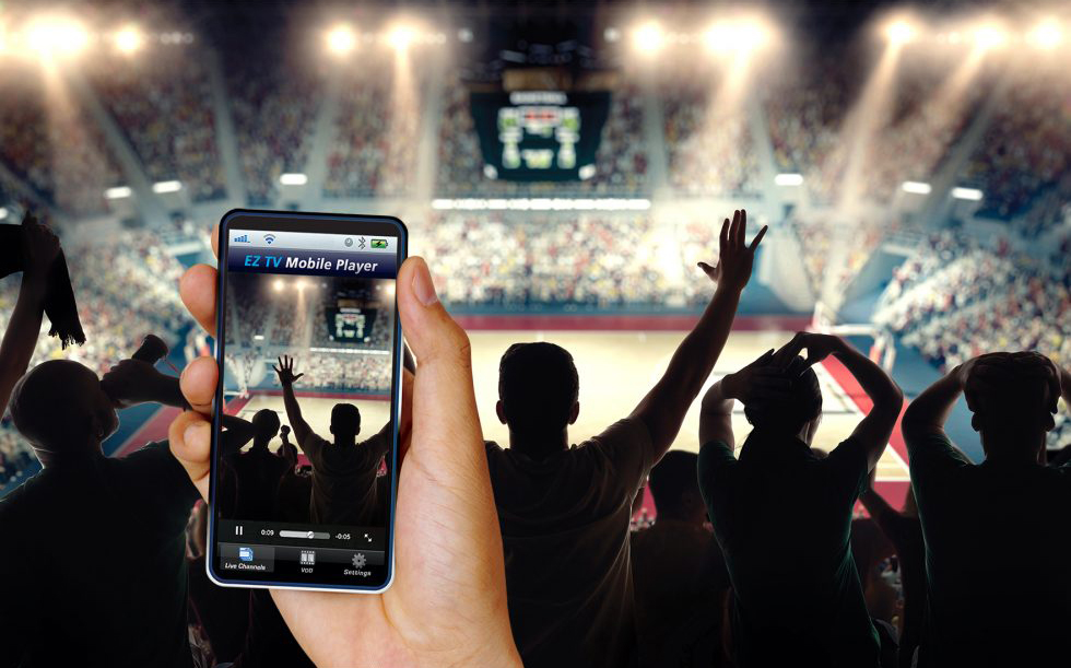 The Winning Playbook for Stadiums and Arenas